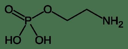 Fosfoetanolamina tem função antitumoral, mas não foi comprovada em humanos.